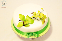 George's Fondant Colored Green Cake