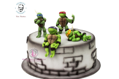 George's Fondant Art Kids Turtle Ninja Cake